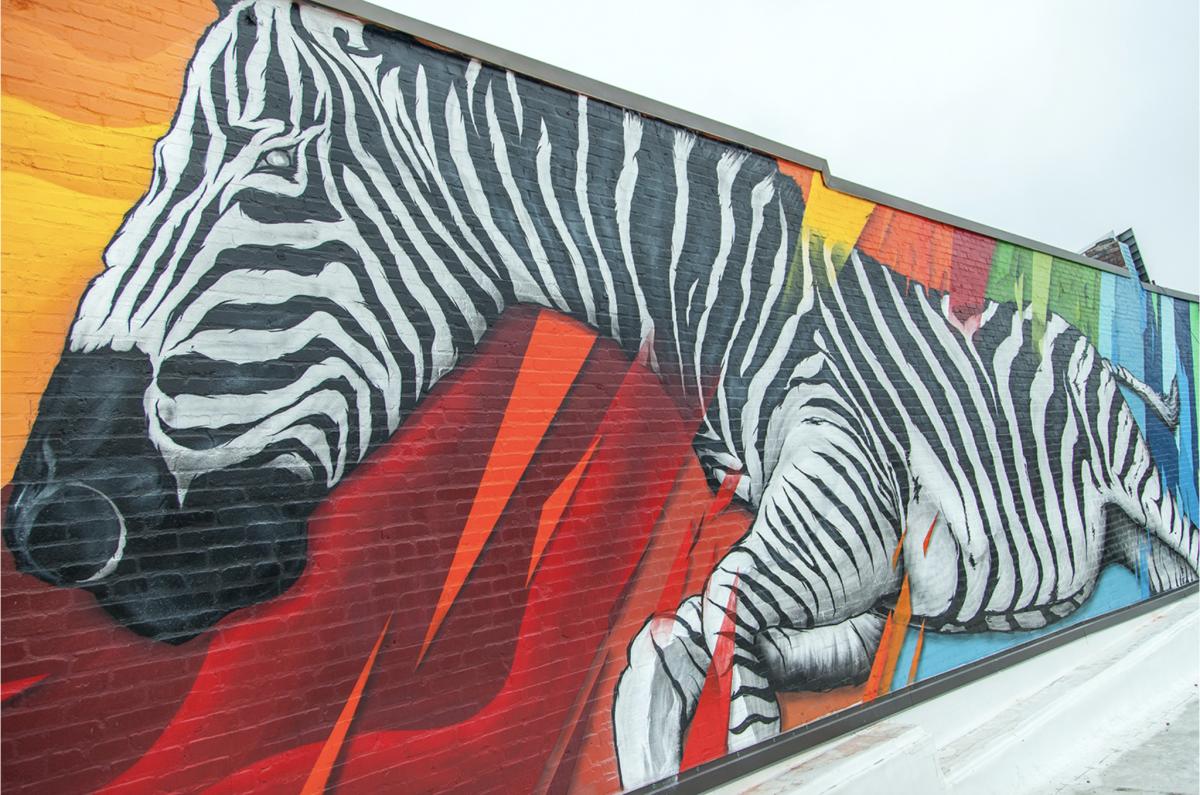 Zebra Mural KC